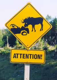Moose warning sign, showing car smashed up against moose